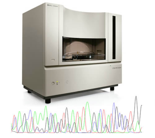 Pathogenomix Ripseq - Pure and mixed chromatograms - polymicrobial sample analysis from one run